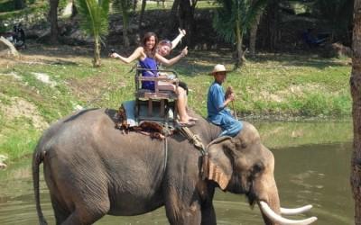 Dalat Elephant Ride Eco Tour