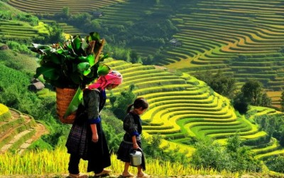 Sapa daily tours