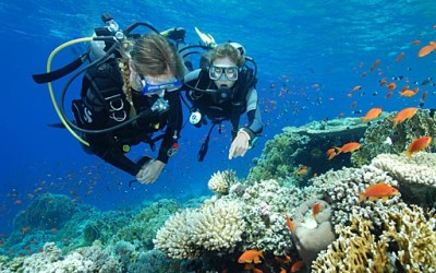 Vietnam diving tours