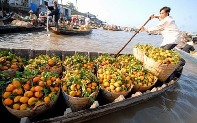 Vietnam tours from 13 - 20 days